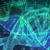 The experiences of close ancestors are passed down to our DNA | Need For Science