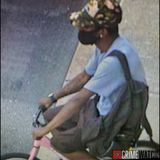 Police search for seafood thief who fled on a small pink bike