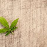 Texas Democrats Say Marijuana Can Help The Economy, But Republicans May Stand In The Way