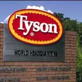 Lawsuit claims Tyson Foods managers bet money on employees getting COVID-19