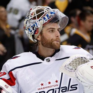Canucks' Braden Holtby, tortoises make it across U.S.-Canada border