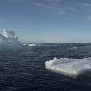 UN approves ban on heavy ship fuel in Arctic