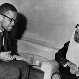 The Political Uses of Malcolm X's Image