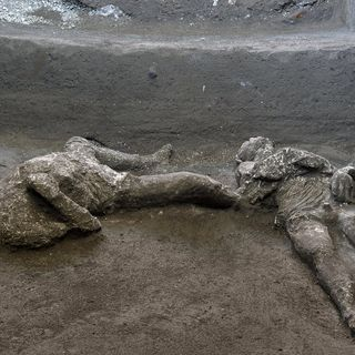 Pompeii's ruins yield bodies of rich man and slave