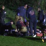 Police Link Multiple Murders, Other Violent Crimes to 5 Men Now in Custody