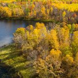 Conservation group buys remaining Potlatch land in Minnesota
