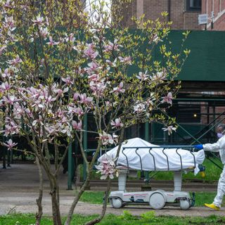 New York City's coronavirus death toll passes 10,000 in revised count
