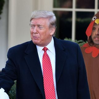 Hunter Biden Arrives At White House Dressed As Turkey In Hopes Of Being Pardoned By Trump