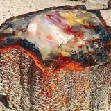 No one knew who took this viral mystery photo in the Petrified Forest. Now we do