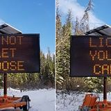 Canadian officials warn drivers not to let moose lick their cars