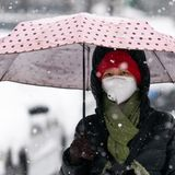 Coronavirus: WHO says changing climates and crowded cities drive disease outbreaks