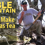 Edible Mountain - How To Make Sassafras Tea