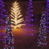 Thief steals part of Garden Grove man's Christmas lights display