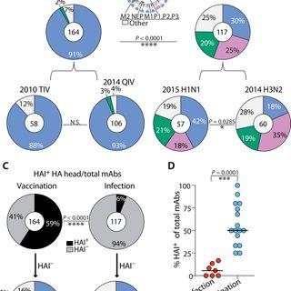 Preexisting immunity shapes distinct antibody landscapes after influenza virus infection and vaccination in humans
