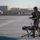 Military robots perform worse when humans won't stop interrupting them