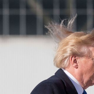 Donald Trump Ends Efficient Showerheads' Reign of Terror