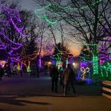 Indianapolis Zoo named 4th in the nation for best zoo lights
