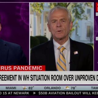 """CNN Anchor Confronts Trump Economic Adviser About His Clash With Dr. Fauci on Medicine: 'What Are Your Qualifications?"""""""