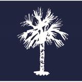 South Carolina historians settle on a new state flag design