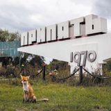 Chernobyl 'Exclusion Zone' Radiation Doses Reanalyzed