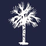 A redesigned South Carolina flag was scrapped after residents made fun of its palmetto tree