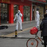 """China Says """"Ready"""" For WHO Experts On Mission To Probe Covid Origins"""