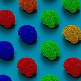 Meet Assembloids, Mini Human Brains With Muscles Attached