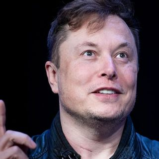 Why an Elon Musk tweet led to a 5,675% surge in Signal Advance's stock
