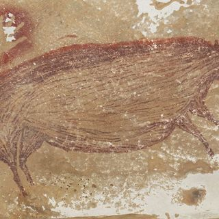 One of the oldest known cave paintings has been found in Indonesia