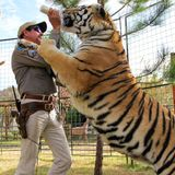 Lagoon denies connection to Joe Exotic, 'Tiger King' documentary