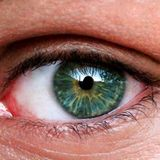 Study: Retinal stem cells from cadavers may help restore vision in blind