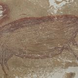 45,000-year-old pig painting may be world's most ancient figurative artwork