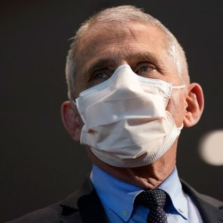 Fauci says U.S. will likely return to 'some degree of normality' at same time as Canada