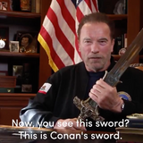 Arnold Schwarzenegger links Capitol attack to Nazi Germany in powerful viral video