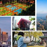 Top 10 digitalized Chinese cities