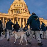 2 Guard members tied to fringe right group militias removed from Biden inauguration, but no plot found