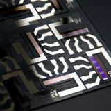 Reducing traps increases performance of organic photodetectors