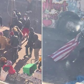 Far-left mob rips down American flag before 'STORMING city hall' in Washington