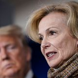 Dr. Birx Criticized for Failing to Speak Out on Trump's 'Parallel Data': Her 'Legacy is One of Sycophancy and Failure'