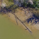 Wreck found by reporter may be last American slave ship, archaeologists say