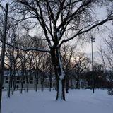 McKinley Park News - Park District Programs Return at McKinley Park, Citywide