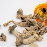 Oregon law that decriminalizes all drugs, offers rehab goes into effect