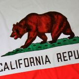 California is a special place. That means holding it to special standards