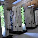 Vertical Farming Is The Future of Food Production - The Debrief