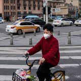 WHO coronavirus origins probe in China fails to reveal major new findings
