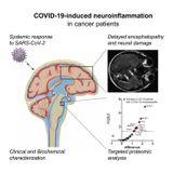 Inflammatory Leptomeningeal Cytokines Mediate COVID-19 Neurologic Symptoms in Cancer Patients