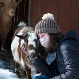 Coronavirus FAQs: If I Have No Post-Vaccine Pain, Is It Working? Plus: Goat Dilemma!