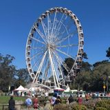 Bay Area chapter of Sierra Club wants Golden Gate Park Ferris wheel removed