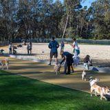 SF's largest dog park gets a major facelift
