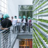 These buildings combine affordable housing and vertical farming